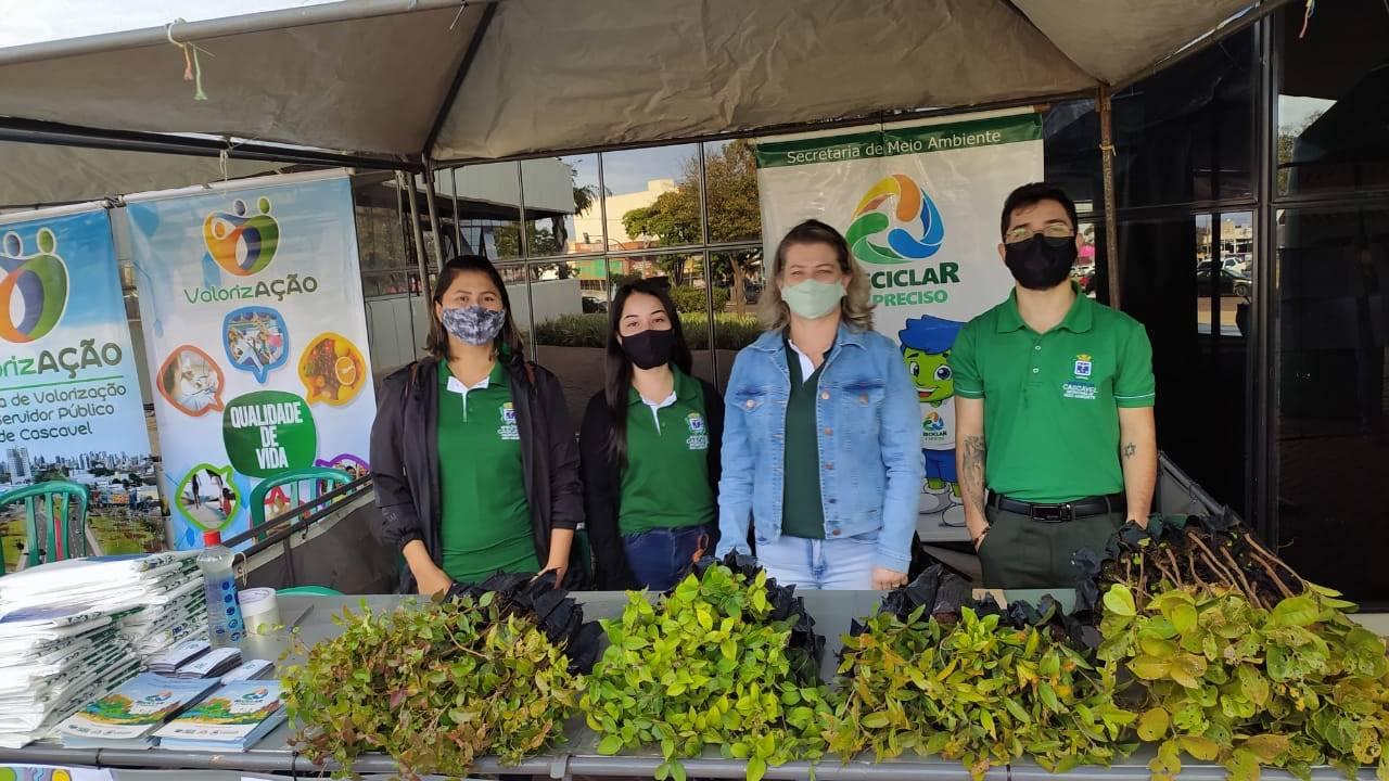 Semana Mundial do Meio Ambiente: Orientações, mudas Frutíferas são oferecidas em frente à Prefeitura