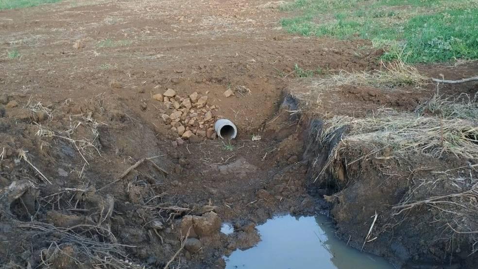 Agricultor é multado em R$ 90 mil por destruir 10 nascentes de água em Marmeleiro, diz polícia