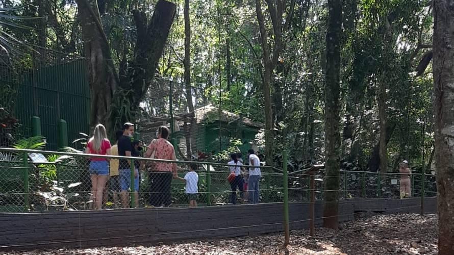 Zoo recebe cerca de mil visitantes pela manhã desta terça-feira (7)