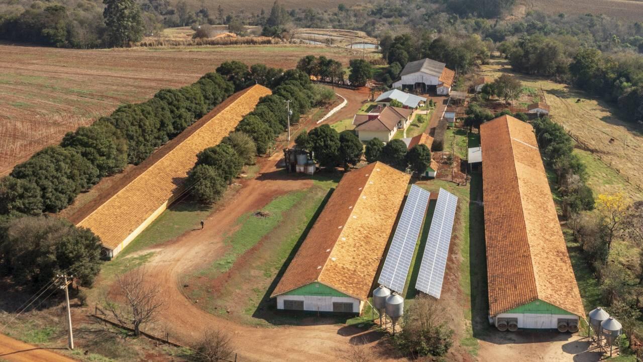 Com demanda em alta, dicas ajudam a escolher melhor projeto de energia solar