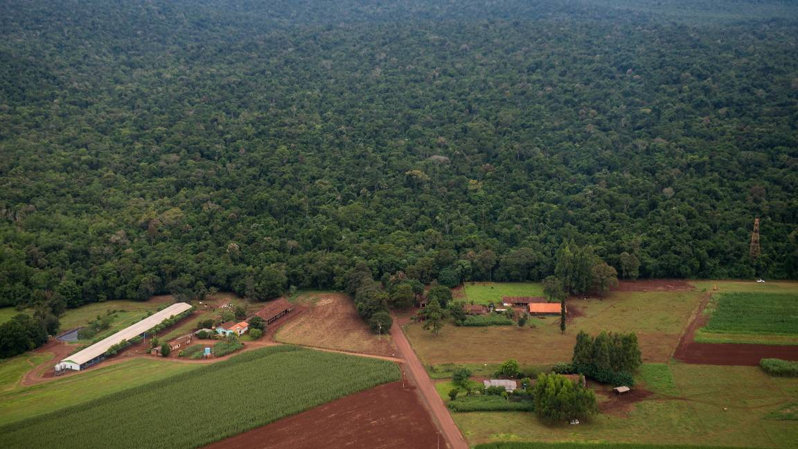 Câmara aprova urgência para criação da Estrada do Colono no Parque Nacional do Iguaçu