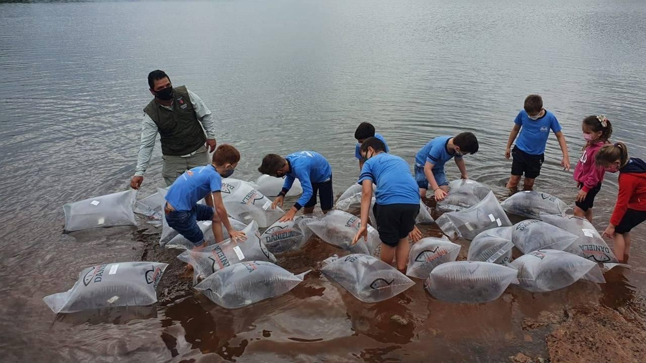 Rio Iguaçu recebe mais 310 mil peixes nativos em ação do Estado