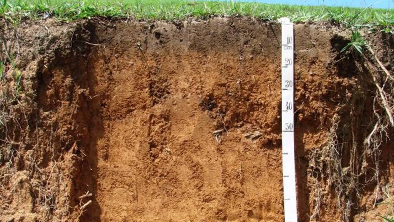 Show Rural Edição de Inverno: Análises de solo evoluem para melhor performance agrícola