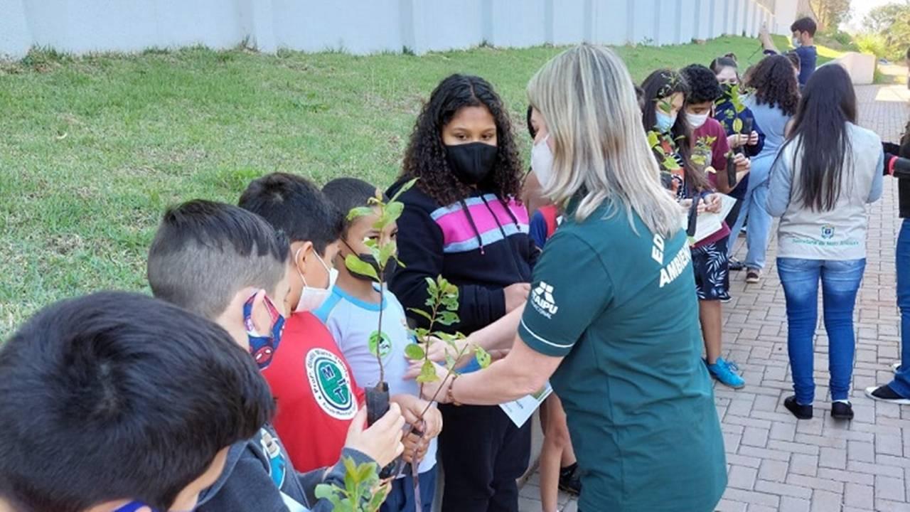Semana da Árvore: Alunos da Escola Municipal Gladis Tibola realizam plantio de Ipês-Amarelos