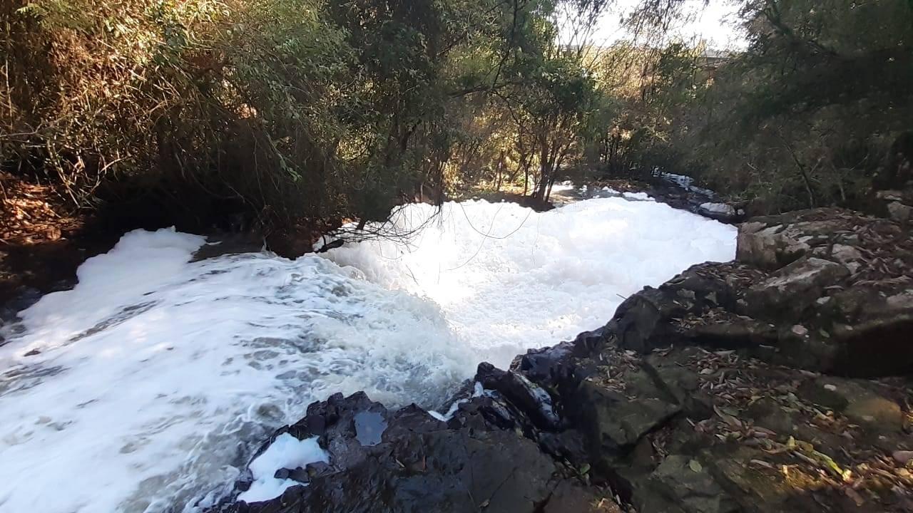 Sanepar é multada após espuma aparecer em rios de Cascavel