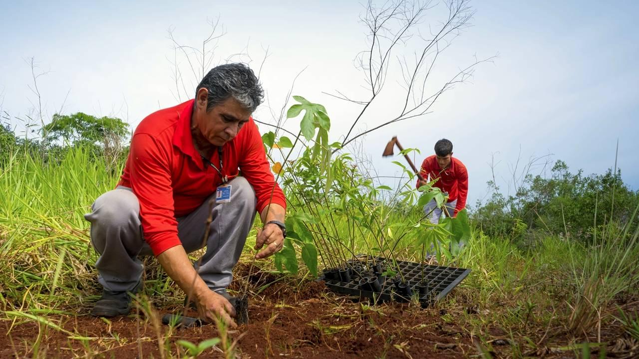 Itaipu Binacional comemora o plantio de 24 milhões de árvores