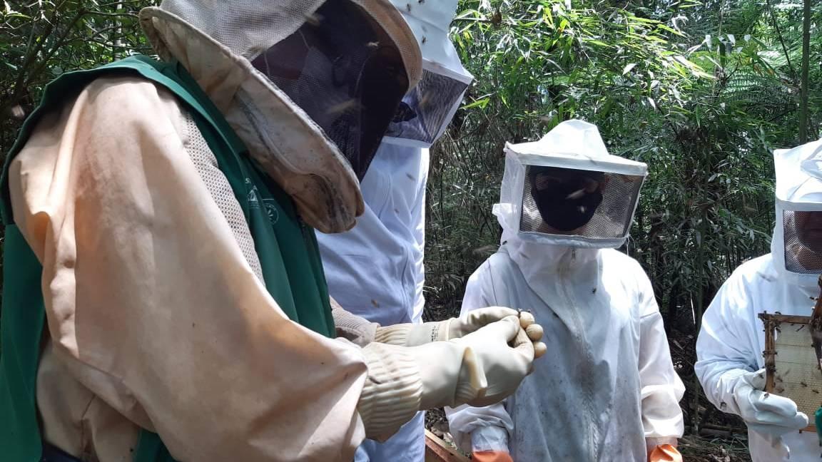 Curso de apicultura é o primeiro de 2021 na Agrotec