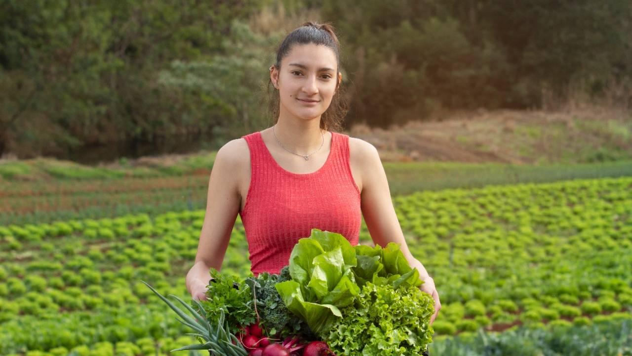 Lei permite venda de produtos da agricultura familiar diretamente ao Município