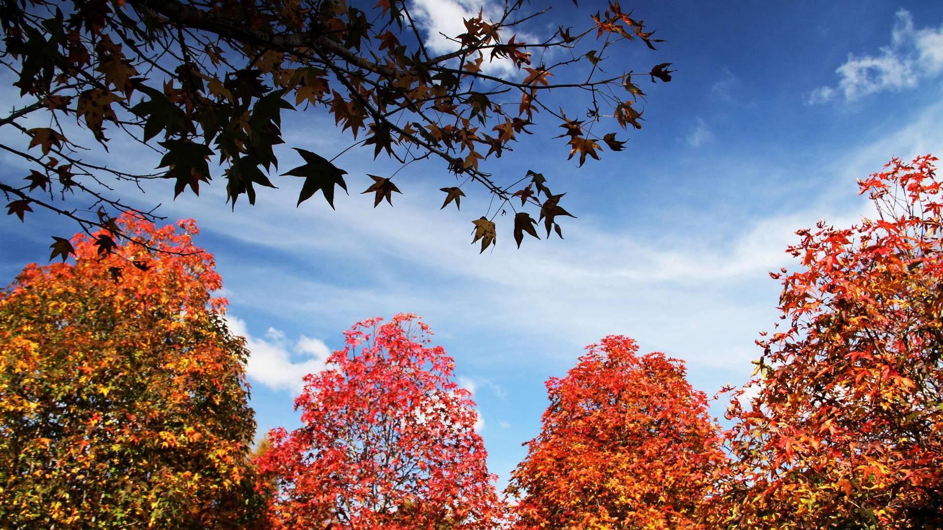 Outono começa abafado e com chuva em algumas regiões do Estado