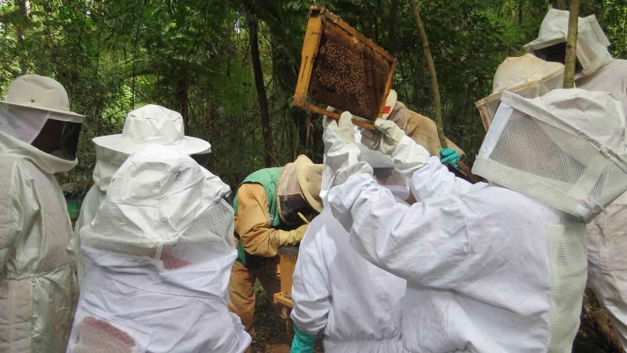 Curso de Apicultura básica é concluído por agricultores na Agrotec