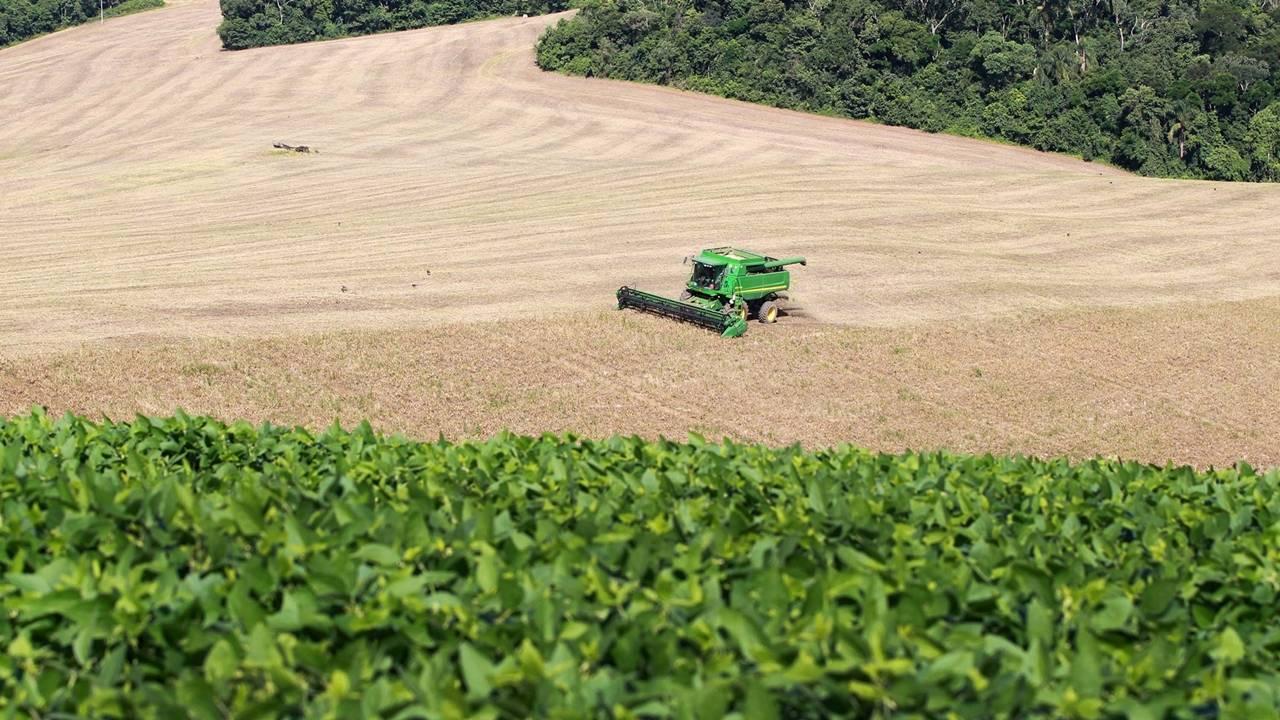 Fórum da Agricultura Familiar debaterá diversificação de produtos