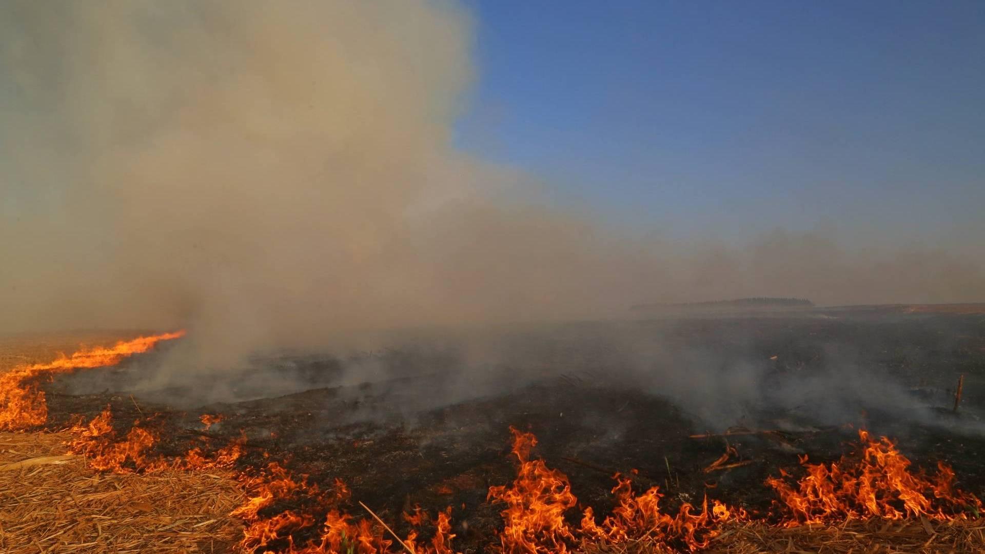 Impacto da seca vai além da falta de água: prejudica agricultura, saúde e agrava riscos de incêndios