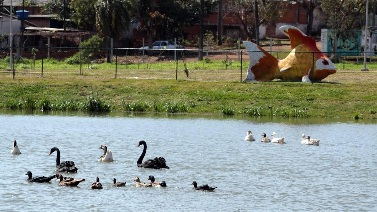 Ecopark Oeste ganha novos moradores