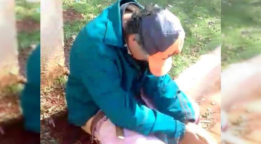 Alep pede à Polícia dados do caso de homem que sentou em formigueiro para ganhar bebida alcoólica