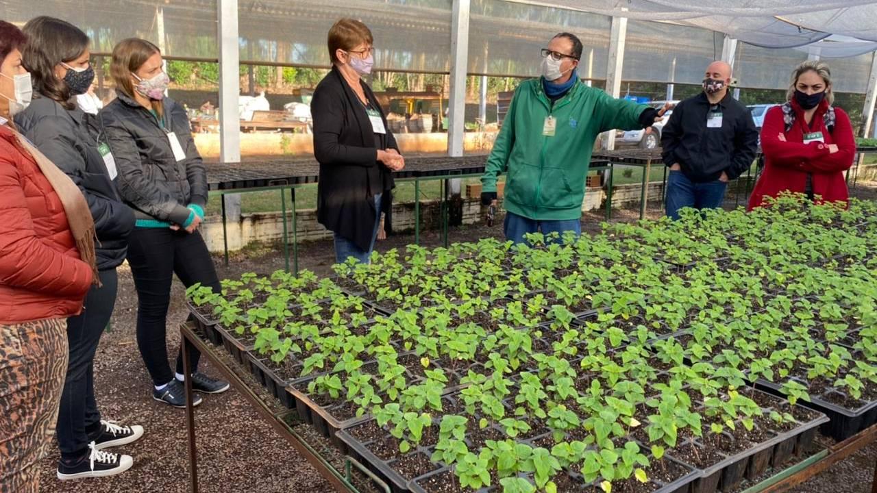 Floricultura é tema de mais uma formação ofertada pela Agrotec