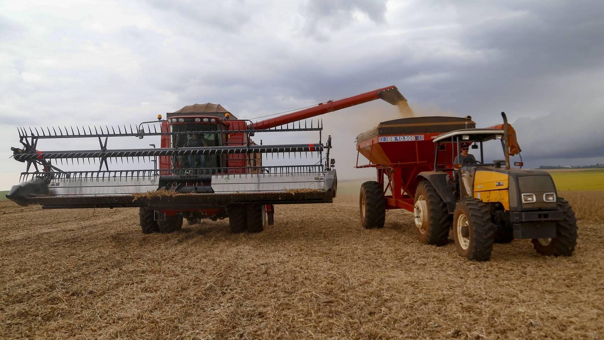 Safra de grãos de verão 2021/22 deve ter crescimento de 9% no Paraná