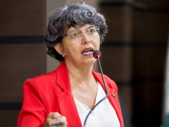 """Professora Liliam sobre o PPA: """"Esta Casa de Leis escolheu não ouvir seu povo"""""""