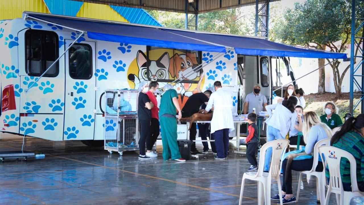 Com estrutura de excelência, Castramóvel leva cirurgia gratuita a animais de Rio do Salto
