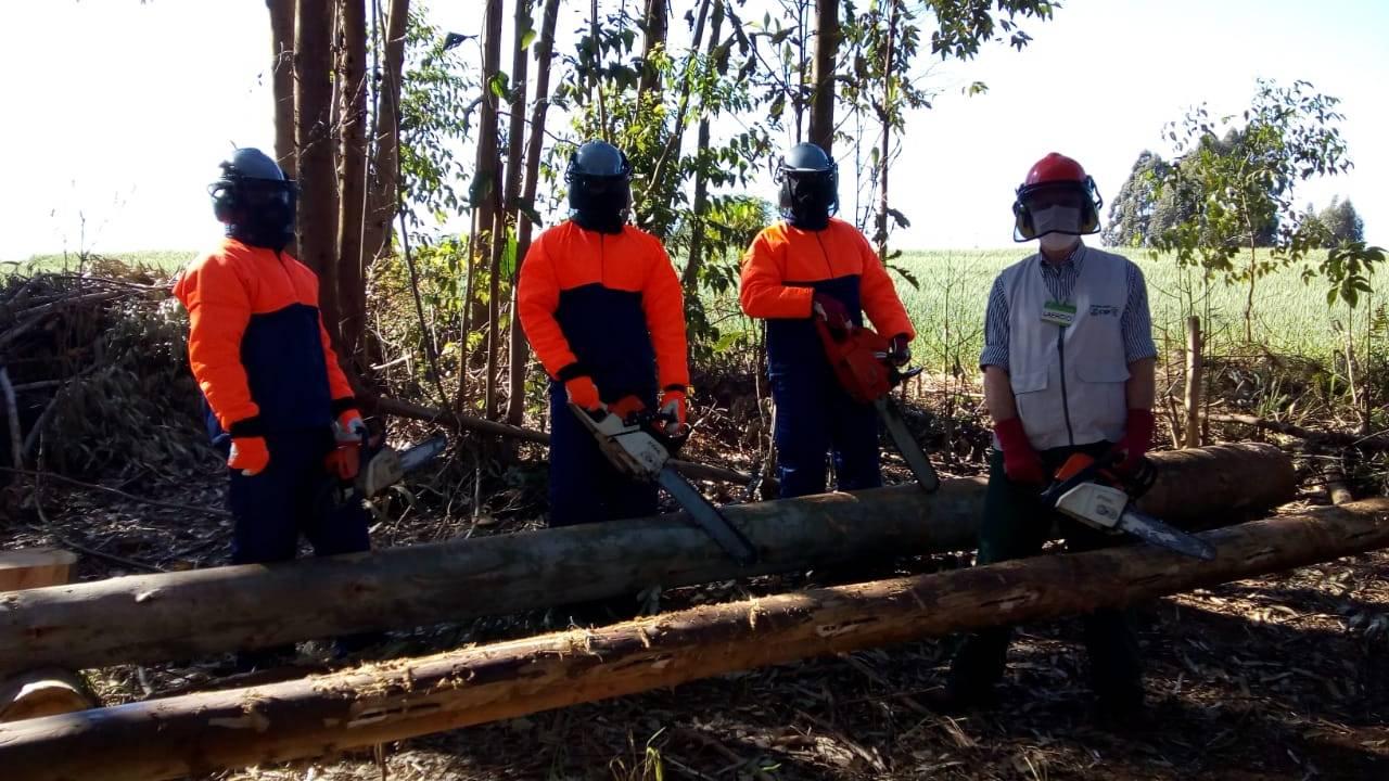 Servidores do Meio Ambiente recebem treinamento para operação de motosserra
