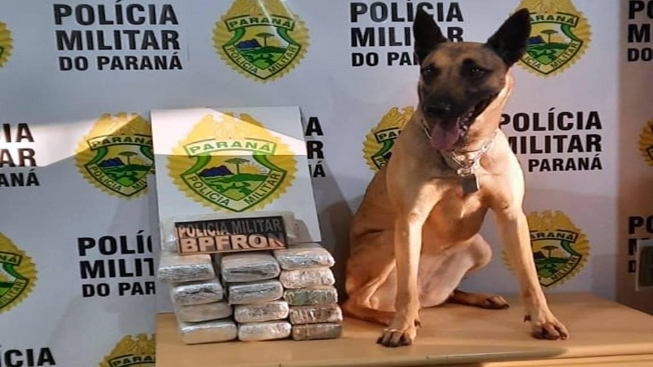 BPFRON apreende jovem com drogas na bagagem de ônibus em Cascavel