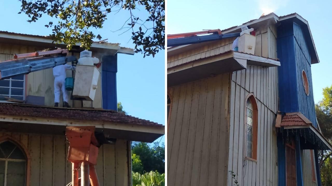 Defesa Civil é acionada para retirar abelhas na Igreja do Lago