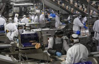 Governo lança na Região Oeste o programa Emprega Mais Paraná