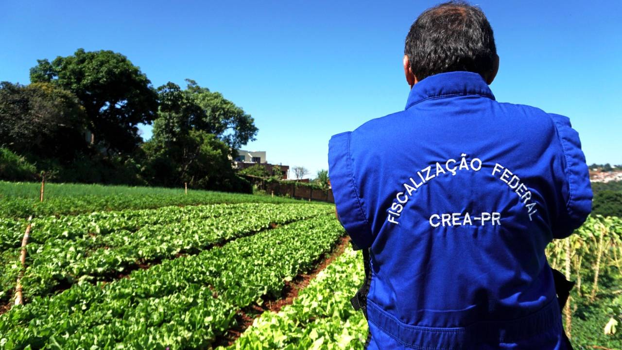 Fiscalização das culturas agrícolas cresce mais de 80% no Paraná