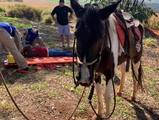 Homem de 52 anos fica ferido após cair de cavalo na BR-369 em Cascavel