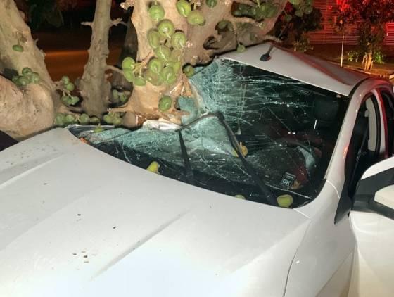 Jovens ficam feridos após colidir Prisma contra árvore no jardim Novo Milênio
