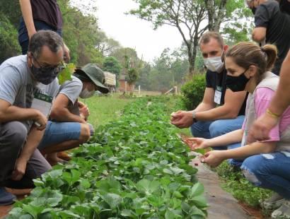 Produtores rurais recebem capacitação em Olericultura