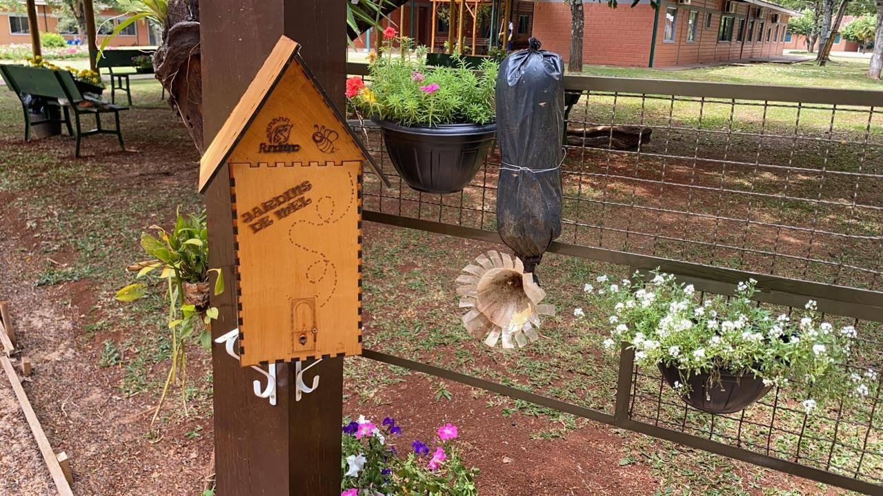 Agrotec abre lista de espera para curso de Meliponicultura: abelha sem ferrão