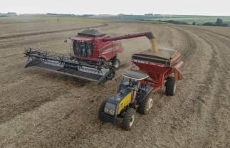 Safra de grãos será de 34,4 milhões de toneladas, aponta boletim da Agricultura